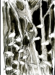 Walnut tree in Scout Wood: monoprint